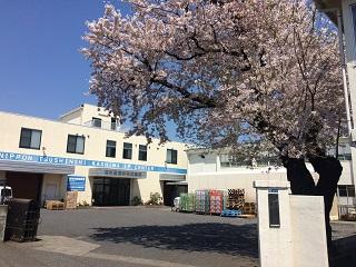 春には桜も満開!明るい雰囲気で働きやすい環境です。