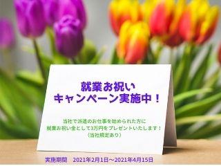 いまなら3万円の就職お祝い金をプレゼント!